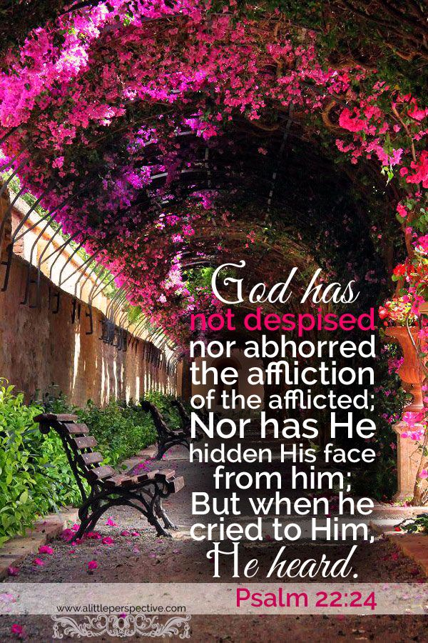God has not despised nor abhorred the affliction of the afflicted; nor has He hidden His face from him; but when he cried to Him, He heard. Psa 22:13