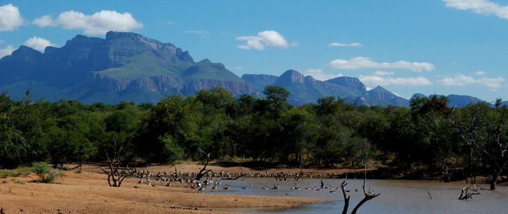 From Zandspruit Estate you will have a beautiful on the Drakensbergen. www.villablaaskans.co.za