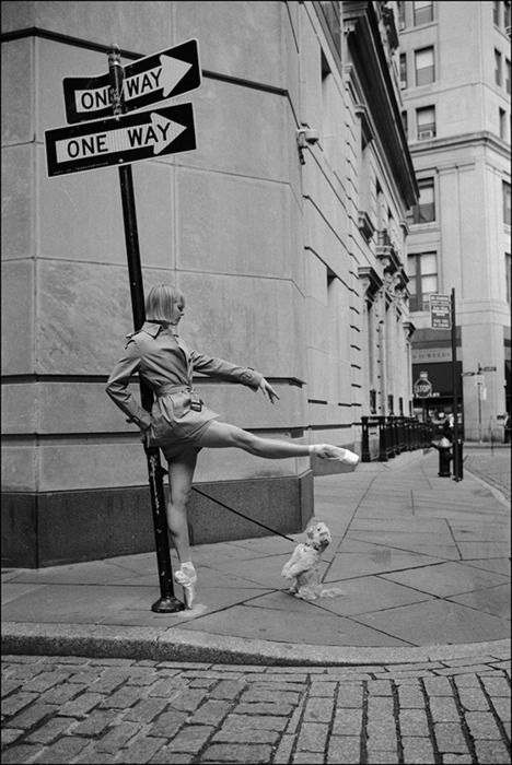 NYC. Although all the indications suggest that there's only one way, Pickles still seems to be reluctant to admit it...Stone St., Financial District // Lauren + Pickles, Ballerina project by Dane Shitagi