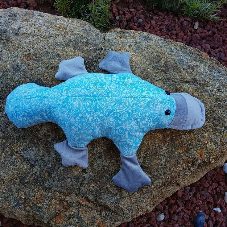 """I know I said I wasn't going to use blue but this just """"spoke"""" to me ....1.5kg weighted platypus...she measres approx 47cm long and has a super soft minky tummy. A trip to the airport next and then who knows... I'm not jettng off Emily's going to Melbourne for the weekend (should have been a 3am start but the plane's been delayed by 6hrs). Have a fun Friday  #arkangelcreations #handmade #hminaus #hminsa #aussiemade #htlmp #htla #sensory #sensoryplay #meadowscountrymarket #autism #aspie…"""