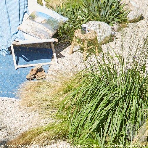 Strandtuin_voortuin_beach_garden_©JacquelineVolke