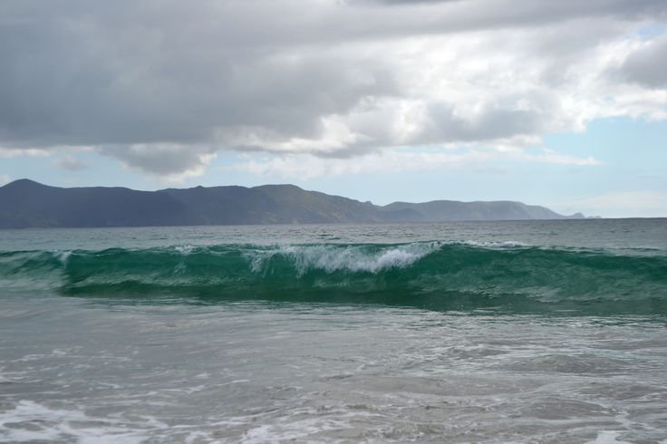 Spirit Bay New Zealand where green waves signal travelers of all nationalities