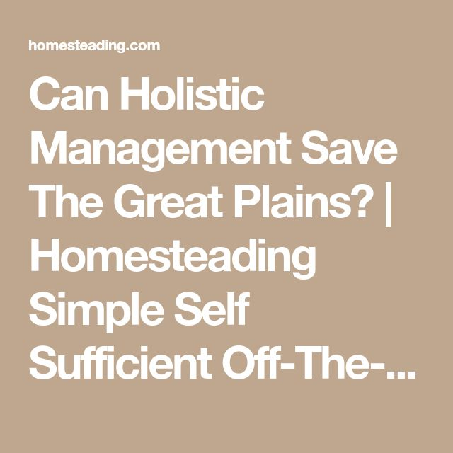 Can Holistic Management Save The Great Plains?   Homesteading Simple Self Sufficient Off-The-Grid   Homesteading.com