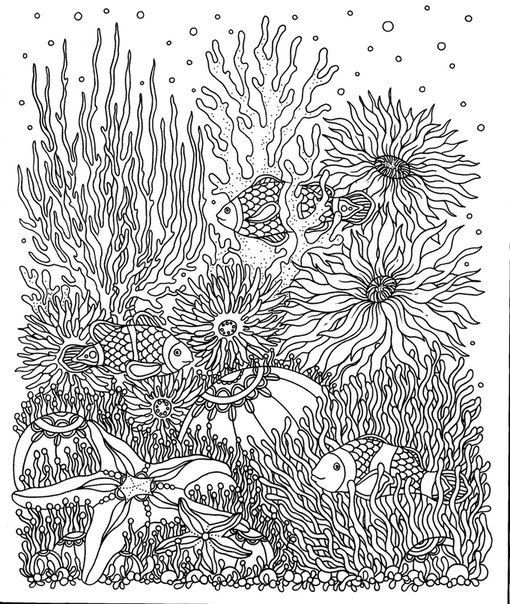 275 Best FREE Adult Coloring Book Prints Images On