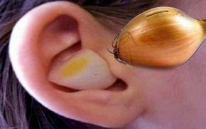 Leac din străbuni! Minune făcută de o simplă felie de ceapă așezata în ureche. – Stiri de Calitate