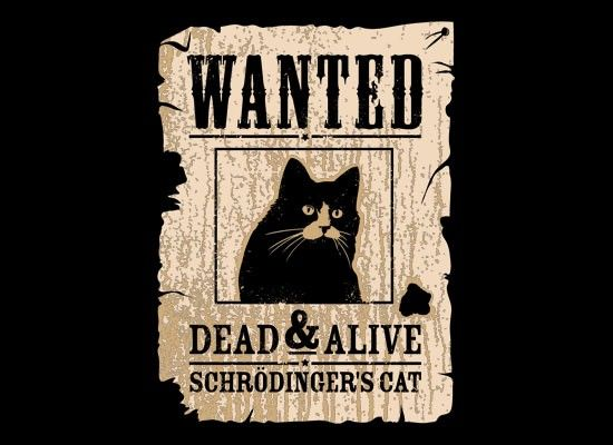 Wanted Dead And Alive. Schrodinger made it possible.