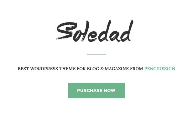 Soledad - Multi-Concept Blog/Magazine WP Theme, a really great choice for a food blog. #multipurpose #wordpress #theme