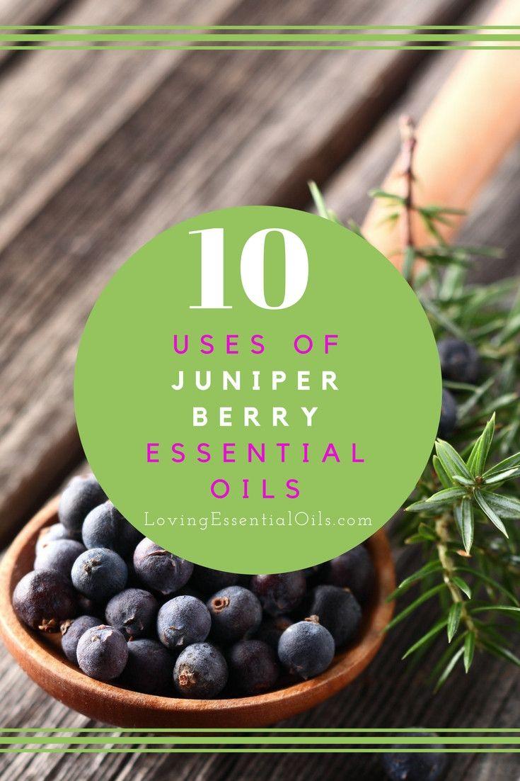 10 Uses of Juniper Berry Essential Oils   How To Use Juniper Oil   Best Essential Oil Tips   Benefits Of Using Juniper Oil