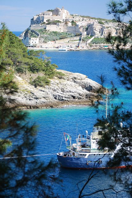 isole tremiti  The water here is soooo blue!  Go into the violet gratto!