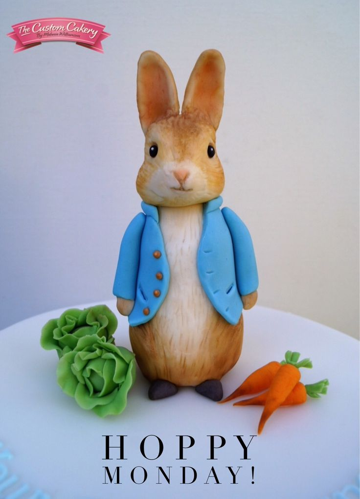 Peter Rabbit Fondant Model by www.facebook.com/doncastercustomcakery