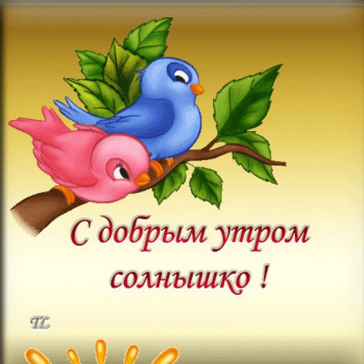 Сделать открытки, открытка доброе утро солнышки