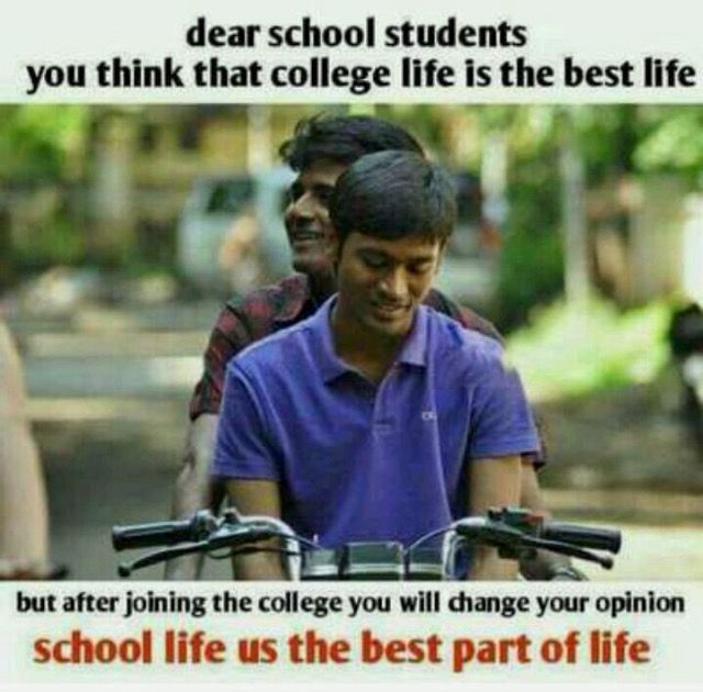 Pin By At Zwi On Fav Nd Funny Quotes School Life Quotes College