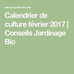 Calendrier de culture février 2017 | Conseils Jardinage Bio