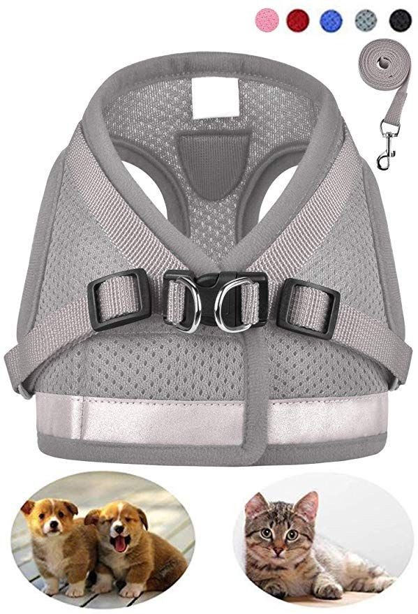 GAUTERF Dog and Cat Universal Harness with