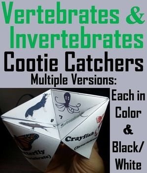 These vertebrates and invertebrates cootie catchers are a great way for students to have fun while learning about the different types of vertebrates and invertebrates.