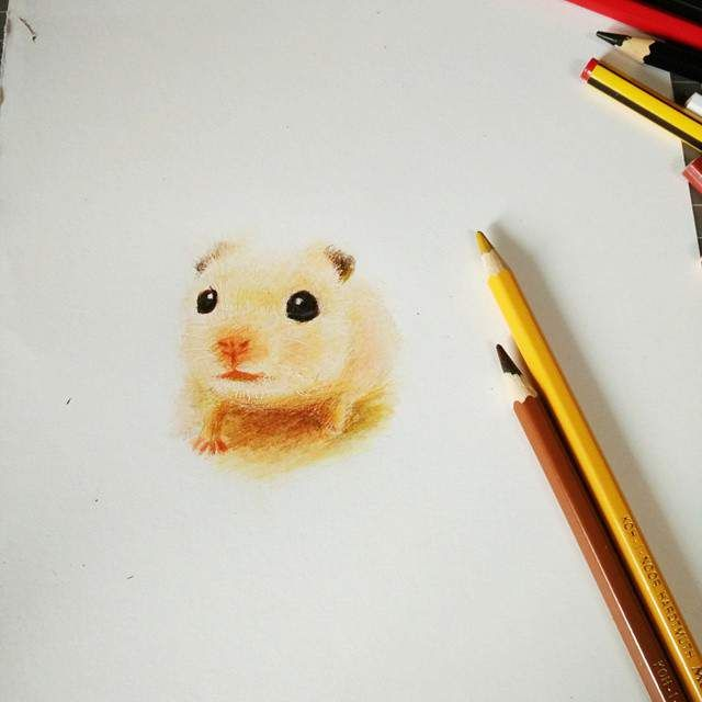Gambar Hewan Lucu Dan Imut Karya Oliudio ( Anak tikus )