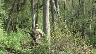 Tips for Turkey Hunting on Public Land
