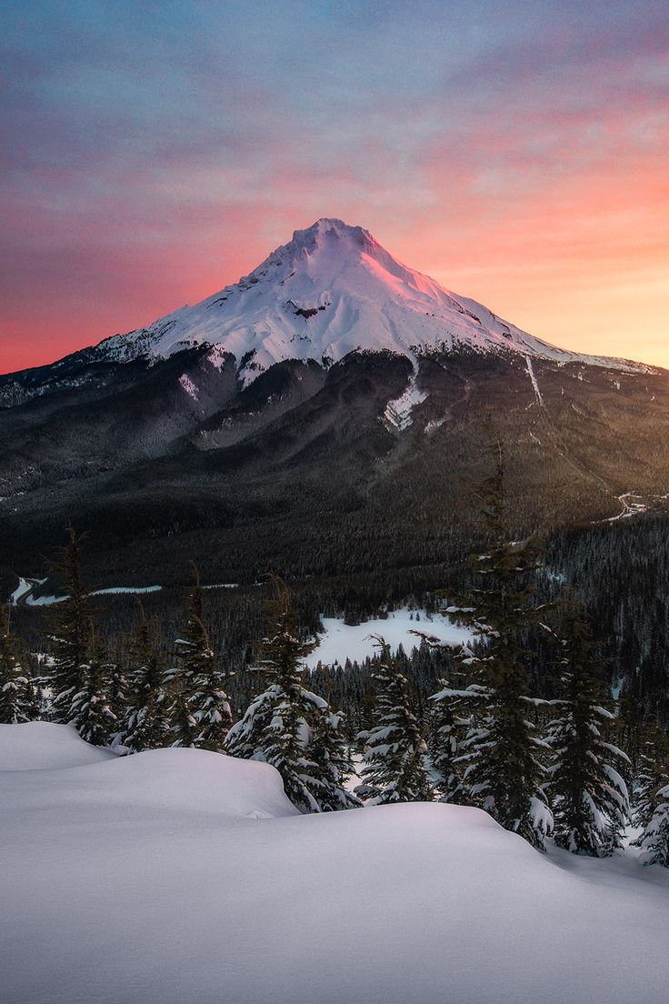 Mount Hood glowing during sunrise seen from Tom Dick and Harry Mountain (OC)[800x1200] -Please check the website for more pics