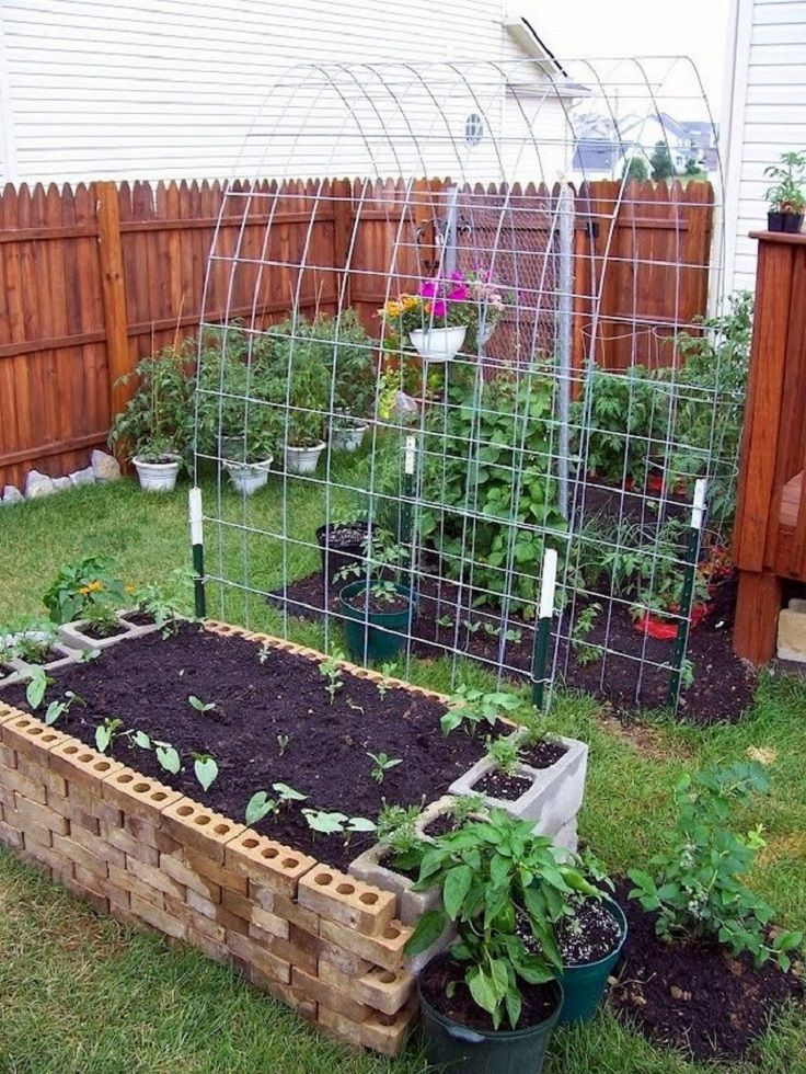 Top 10 Gorgeous Trellis Ideas for Your Garden - Page 9 of 10 - Top Inspired