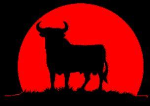 AP bullfighting webquest