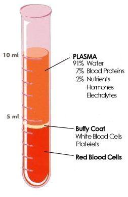 CBC blood composition