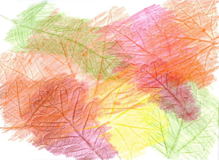 ...then hold fall colour crayons on their sides and rub them over the top of the paper to reveal the textures and patterns on the leaves.  Children strengthen the small muscles in their fingers as they grasp and control the crayons.  They also learn the names of different colours and relate these to the seasonal changes they are observing.