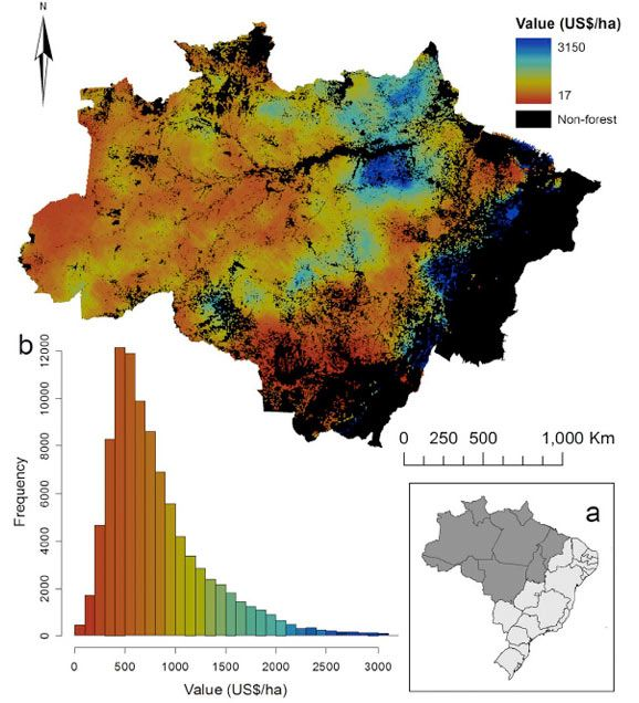 Where will the loggers strike next Map could model deforestation