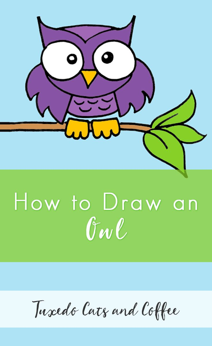 best 25 draw an owl ideas on pinterest how to draw owl owl
