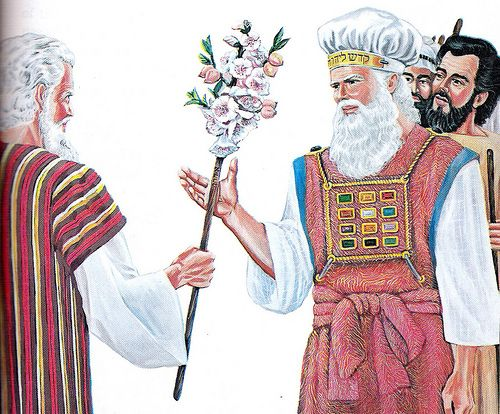 Numbers 17:7 And Moses laid up the rods before the Lord in the tabernacle of witness. 8 And it came to pass, that on the morrow Moses went into the tabernacle of witness; and, behold, the rod of Aaron for the house of Levi was budded, and brought forth buds, and bloomed blossoms, and yielded almonds.  9 And Moses brought out all the rods from before the Lord unto all the children of Israel: and they looked, and took every man his rod.