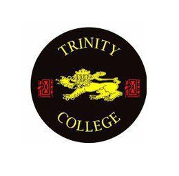 Trinity College Pub | PeLipscani.RO