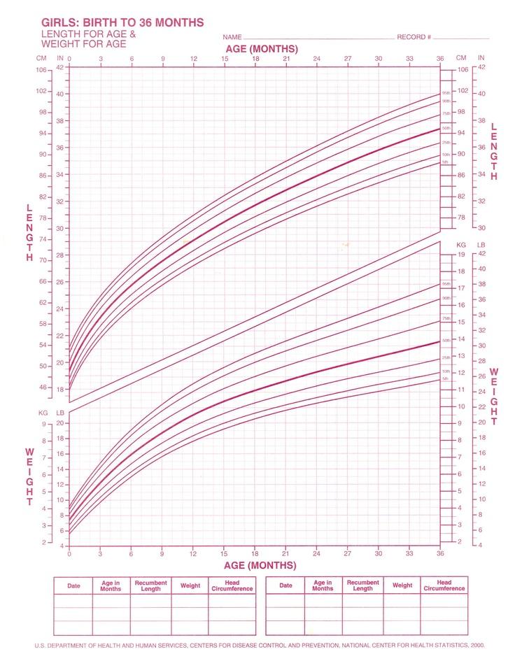 human weight chart