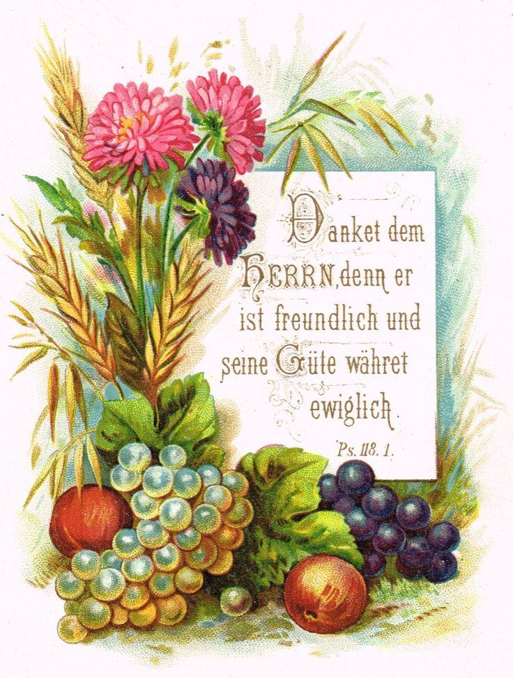 German+flowers.jpg (1210×1600)