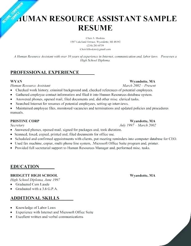 Entry Level Resume Samples Pdf Example Contemporary Design Human