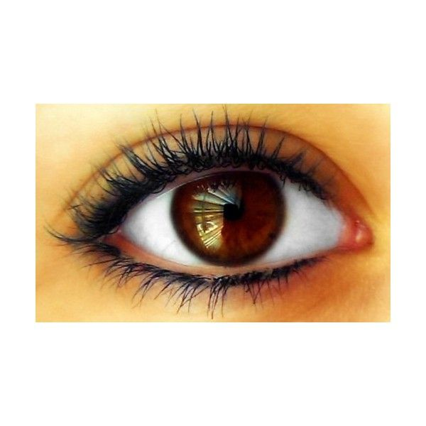 brown eyes | Tumblr ❤ liked on Polyvore