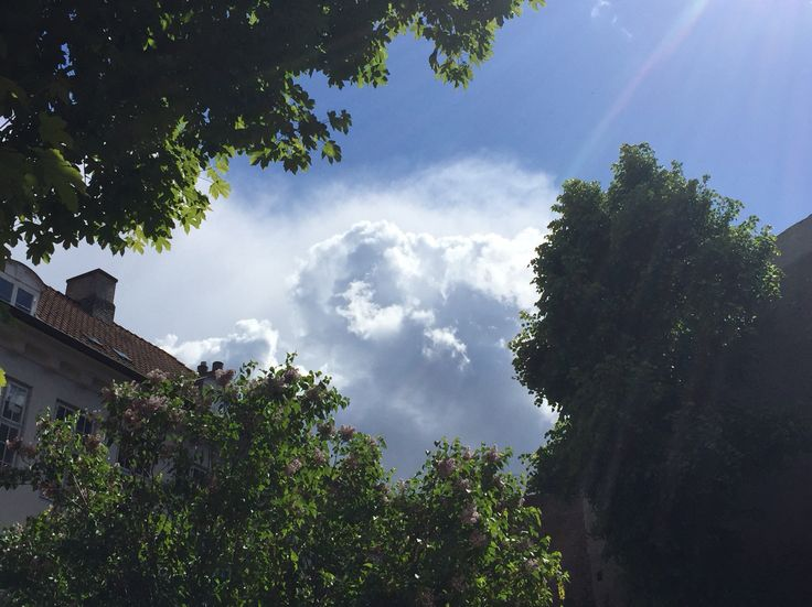 ⭐️ Sunswarmed cloud in the sky. View from a garden in central Copenhagen.