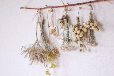 ドライフラワー dryflower |FLEURI blog