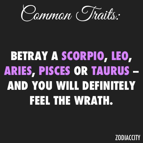 Common Traits - Betray a Scorpio, Leo, Aries, Pisces or Taurus and you will definitely feel the wrath!