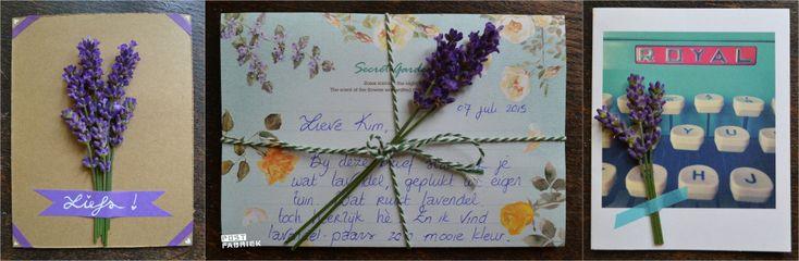 Terugblik: Bloemen Drogen & Lavendel Plukken voor je post