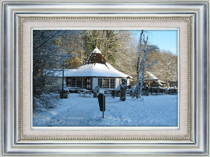 Leidse hout in de winter