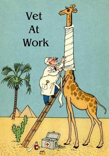 VETERINARIAN AT WORK, GIRAFFE, SORE THROAT, MAGNET, HUMOROUS COMIC from postcard