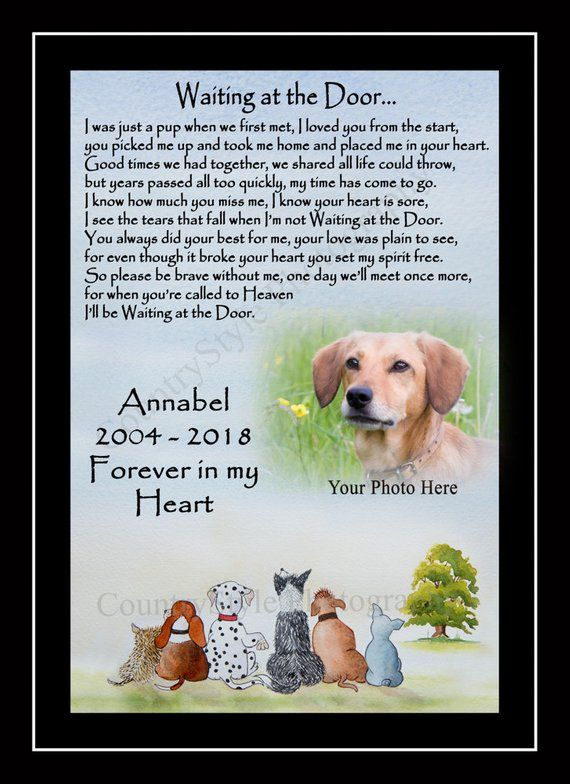 Personalised Pet Dog Memorial Keepsake Gift Waiting At The Etsy Dog Memorial Dog Poems Pet Dogs