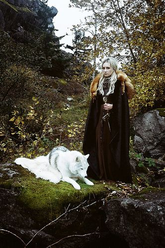 Okay--how similar can this get to my book? Gudrid and her wolf...