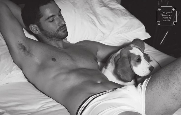 Tom Ellis for Attitude Magazine 05. There's something a little frightening about how giddy this man makes me