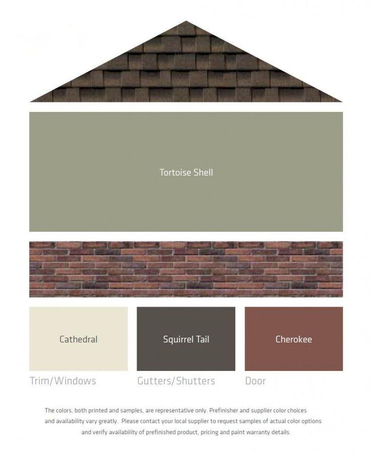 Tortoise shell or delta moss reno exterior for Paint colors that go with brown trim