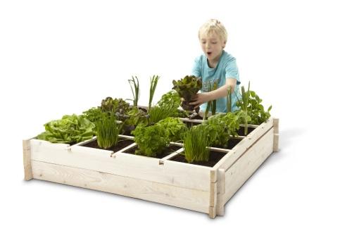 """""""Vierkante meter tuin"""" - Het is een erg leuk concept, je pakt 4 planken van een meter lang en ongeveer 20-25 cm breed, maakt die aan elkaar vast, vult de bak met aarde en legt tenslotte 6 latjes op de bak en je hebt een vierkante meter tuin met daarin 16 vakjes.    Zo kan iedereen een eigen groentetuintje, kruidentuintje of bloementuintje aanleggen. Waarbij je handig gebruik kunt maken van de 16 vakken om zo van allerlei soorten planten/groenten te zaaien/poten."""