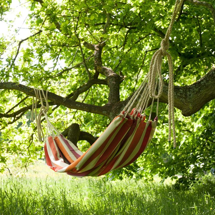 Now that's one way to relax this summer! Does it get any better than your very own hammock?