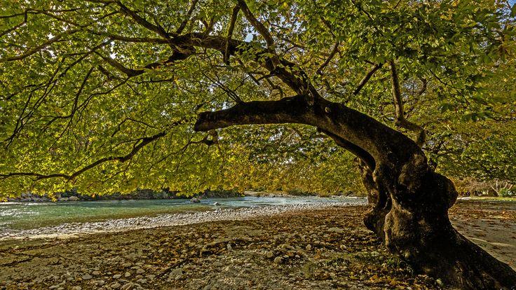 Acherontas River, Preveza - null