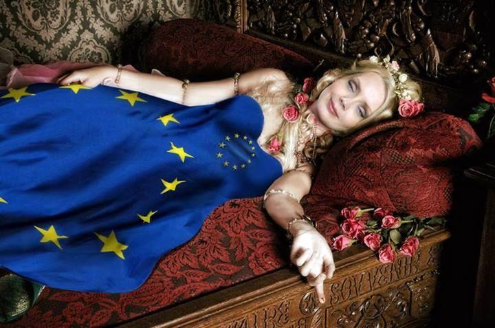 Animal Welfare Intergroup - Europe's Sleeping Beauty? Huffington Post.
