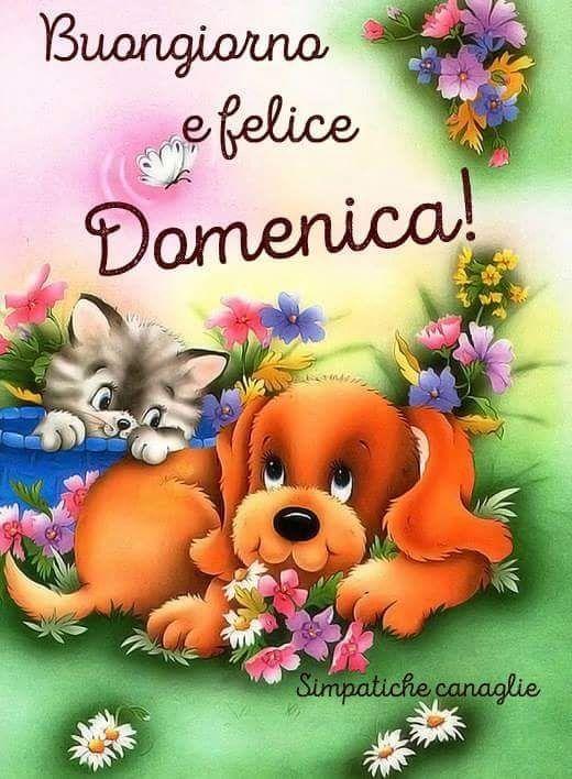 79 best buongiorno buona domenica images on pinterest for Buongiorno divertente sms