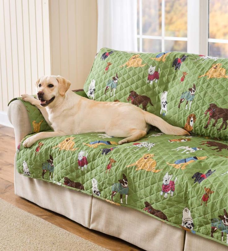 Doggone Good Time Pet Furniture Cover lets your pet on the furniture without the hairy, dirty mess.